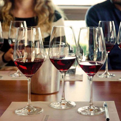 degustazione-vini-5